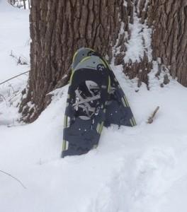 snowshoesoak1